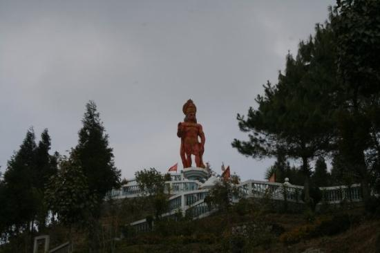 Kalimpong, India: Yes it's really tall and impressive, but I'm not climbing any more steps!