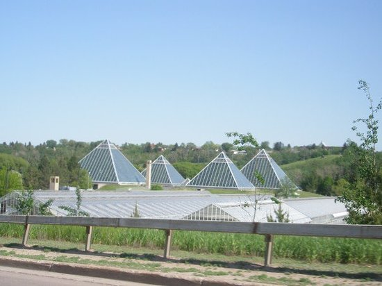 Edmonton otelleri