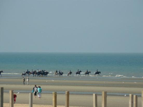 alojamientos bed and breakfasts en De Panne
