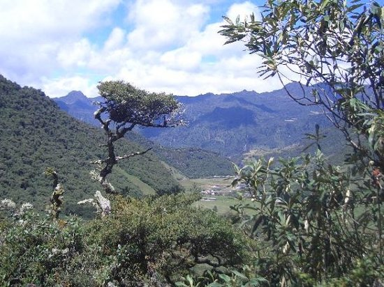 Quito, Ecuador: Hiking up the road just to get to the entrance to rain forest. hard walk...we were 14,000 ft ele