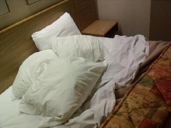 Sleep Inn: The bed was clean, crisp, and very comfortable to sleep in.