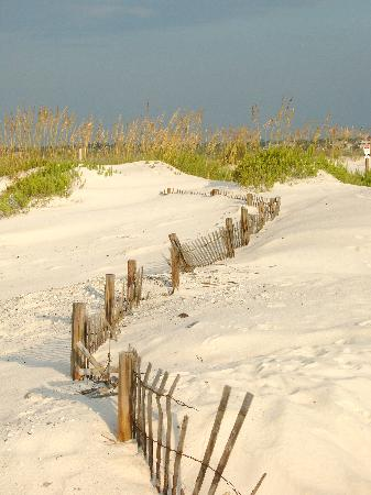 Perdido Key, FL: beautiful beach weather