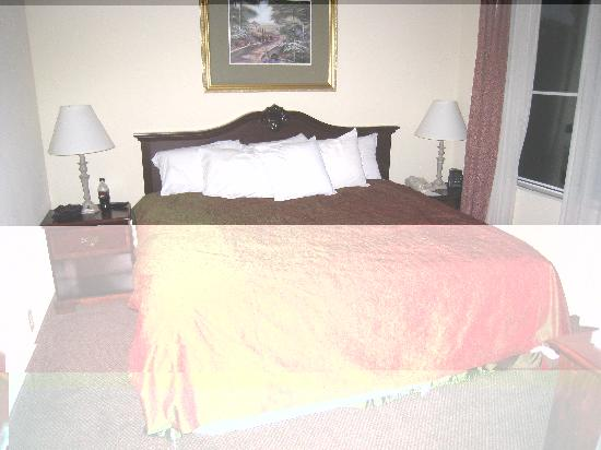 Homewood Suites Charleston - Mt Pleasant: Chambre
