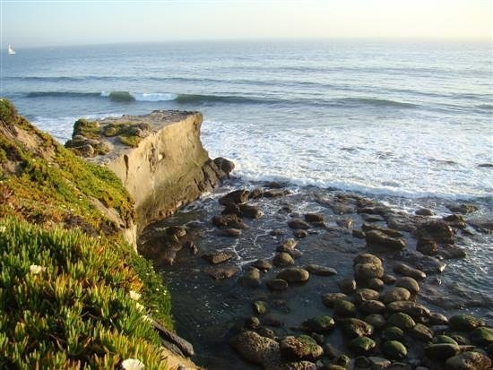 Santa Cruz Photos - Featured Images of Santa Cruz, CA - TripAdvisor
