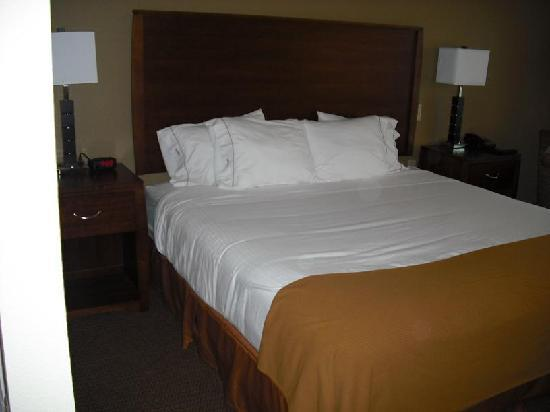 Holiday Inn Express Hotel & Suites Dubuque-West: See how soft the bed is?