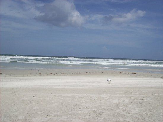 New Smyrna Beach, FL: The ocean