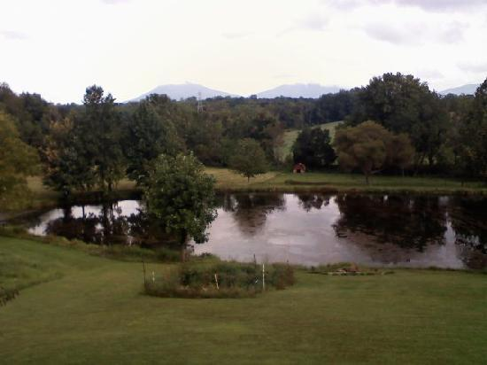 Vanquility Acres Inn: View of backyard towards Peaks of Otter
