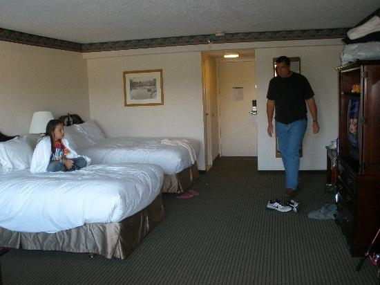 Lakeview Motor Inn: Lakeview Inn room.....