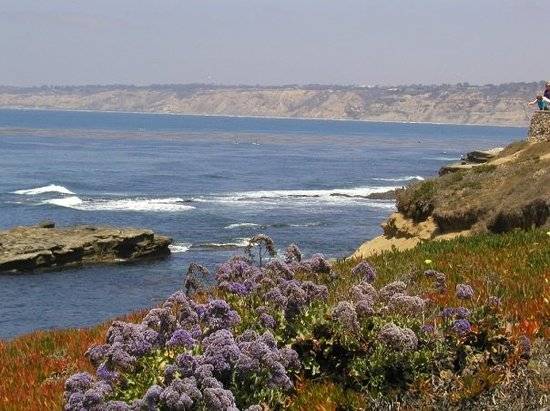 La Jolla otelleri