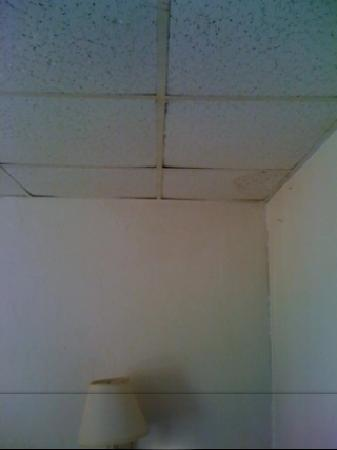 Econo Lodge: Nasty Drop Ceiling