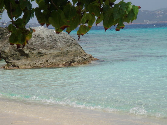Caneel Bay, -: Paradise Beach