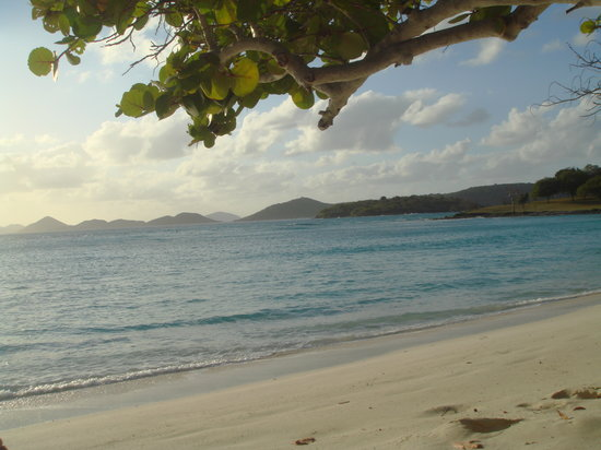 Caneel Bay, St. John: Scott Beach