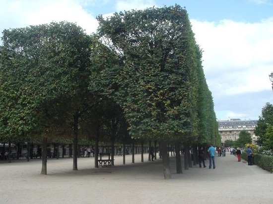 Jardin du palais royal paris france address phone for Jardin royal