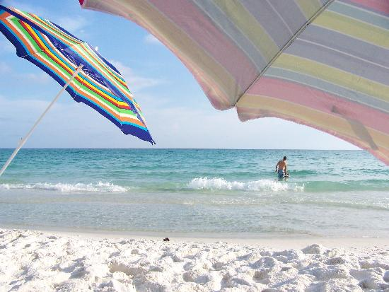 Sandestin Golf Beach Resort Rental