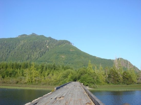Tofino, Canada : the bridge I jumped off of:)