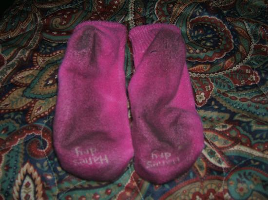 Red Roof Inn Branson: My socks, after a few hours of walking on the dirty floor!!