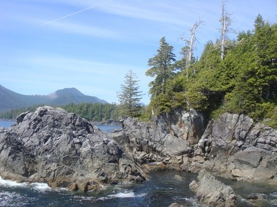 Tofino attractions
