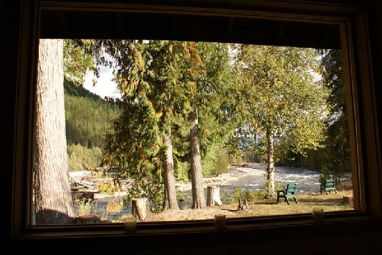 Grizzly Bear Ranch: View from the eco cabin