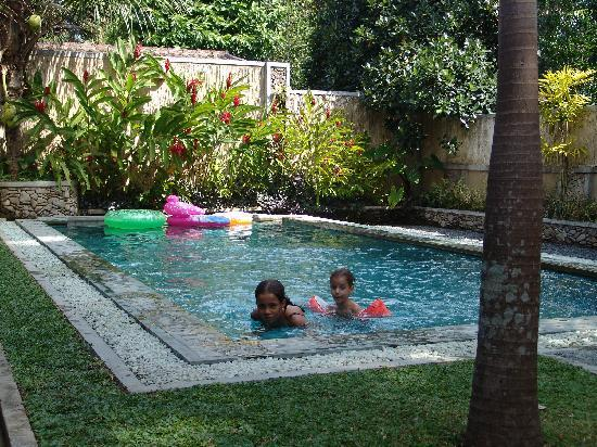 Very Small Backyard Pools : back yard swimming pool designs