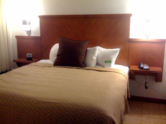 Hyatt Place Nashville/Brentwood : Guest Bed room