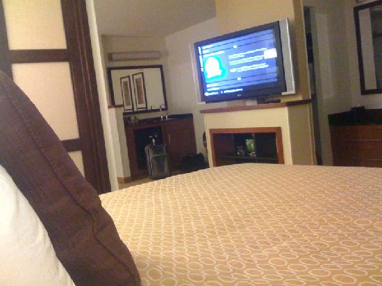 Hyatt Place Nashville/Brentwood : Flat Screen TV from the bed