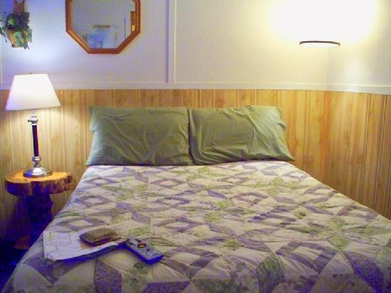 Pioneer Motel: Small but cozy room