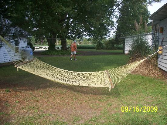 Big Mill Bed and Breakfast: Hammocks for total relaxing!