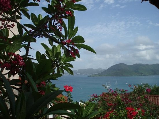 Martinique bed and breakfasts