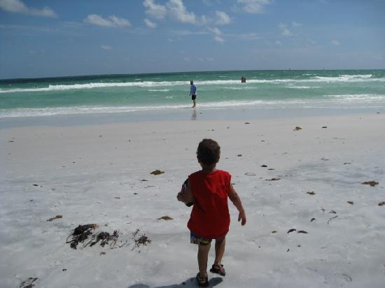 Siesta Key Beach Place: The beach