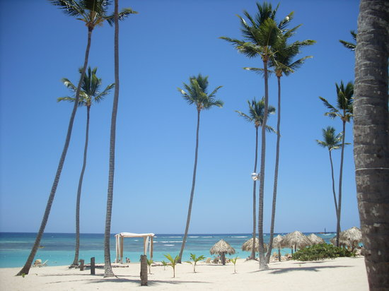 Majestic Colonial Punta Cana : The beach