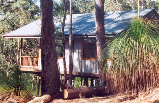 Photo of Grass Tree Escapes South West Rocks
