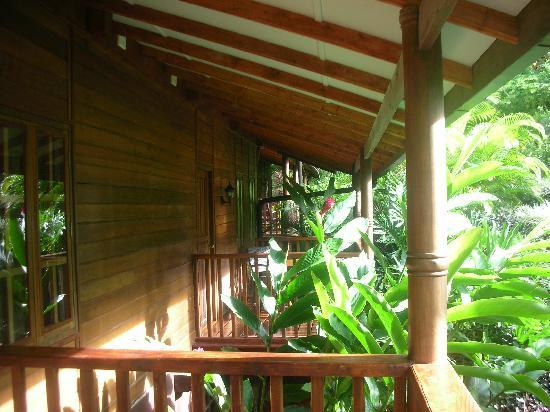 Beautiful and tranquil hotel cuna del angel pictures for Balcony jungle