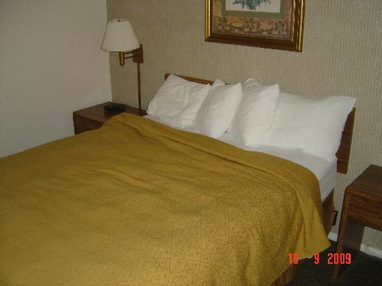 Quality Inn Buellton: used bed