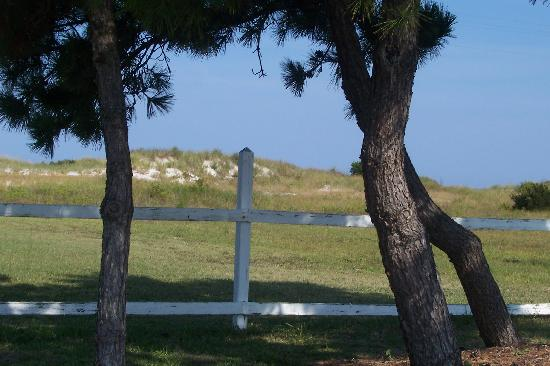 Cedar Island, Carolina del Norte: Quiet spot to contemplate.