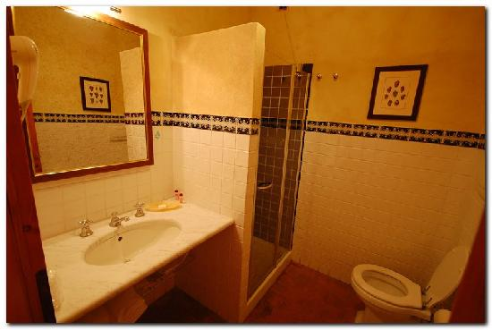 Palazzo al Torrione 2: Bathroom was spotless and included hari dryer