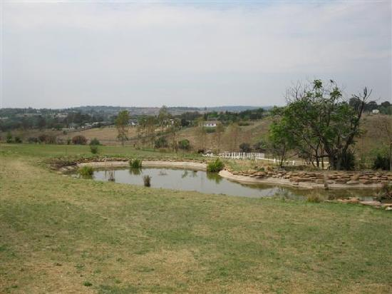 Amber Rose Country Estate: a small part of the garden