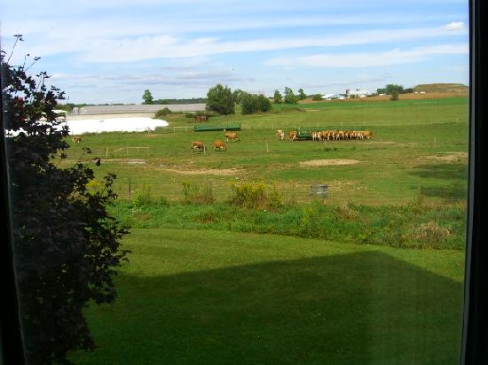 Super 8 Chambersburg / Scotland Area: Farm north of the hotel