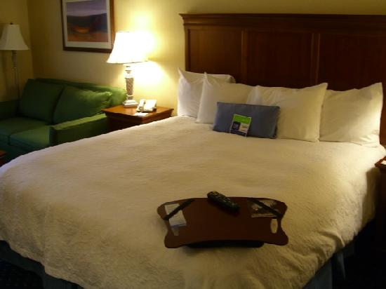 Hampton Inn & Suites Fredericksburg South: King bed