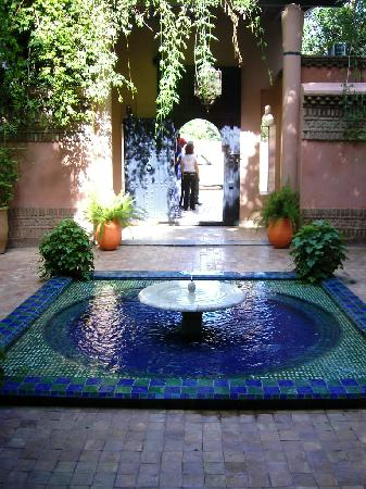 Riad Aguerzame: une prise de vue au jardin de Majorelle