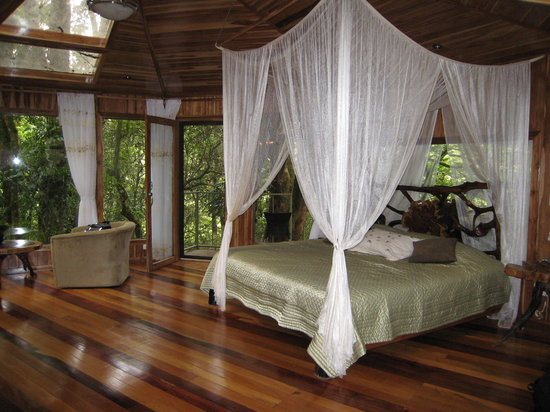 Hidden Canopy Treehouses Boutique Hotel: inside Glade