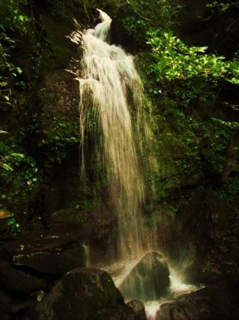 Heredia, Costa Rica: we also found a water fall after wandering in all the wrong directions