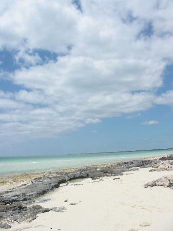 Deep Water Cay: Paradise Found!