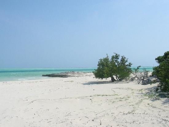 Deep Water Cay: Secluded spaces abound