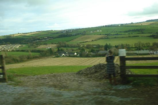 Mallow, Ireland: Green Fields