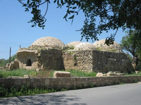 paphos muslim Is living in cyprus as fantastic as it sounds and what are the costs of living read this article and get a idea of life and living costs in cyprus.
