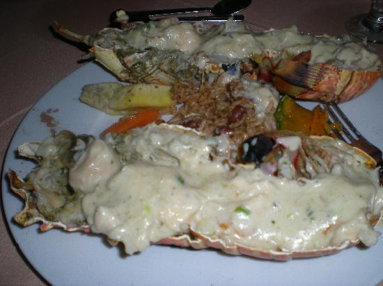 St. Kitts en Nevis: wonderful Lobster Dish, taste better than it looks