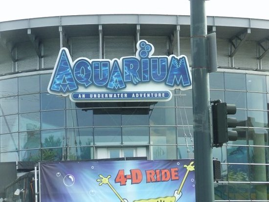 Downtown Aquarium Denver Co Hours Address