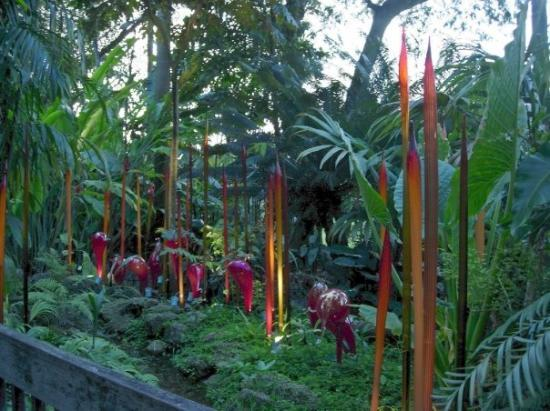 Корал-Гейблс, Флорида: Chihuly blown glass sculpture-special 2007 exhibit at  Fairchild Tropical Botanical Gardens