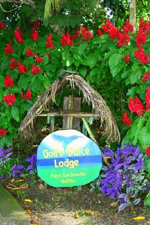 Golfo Dulce Lodge: Welcome