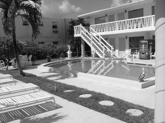 Deerfield Beach, : black n white pool pic